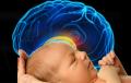 تفاوت بین ساختار مغز نوزاد دختر و پسر