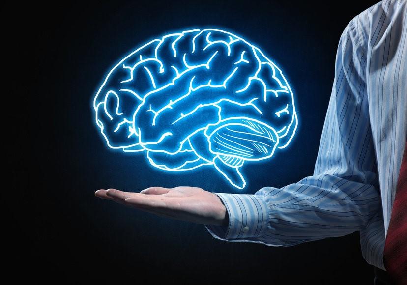 مغز نوزاد